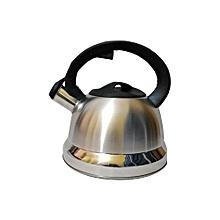 bouilloire théière  souffleur en inox - 2.5 litres