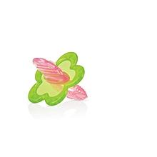 jouet de dentition chewbies 3m+ - avec sa boîte rose/vert