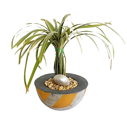 white label pot de fleurs en b ton ambiance feng shui epaisseur 9cm hauteur 9cm. Black Bedroom Furniture Sets. Home Design Ideas